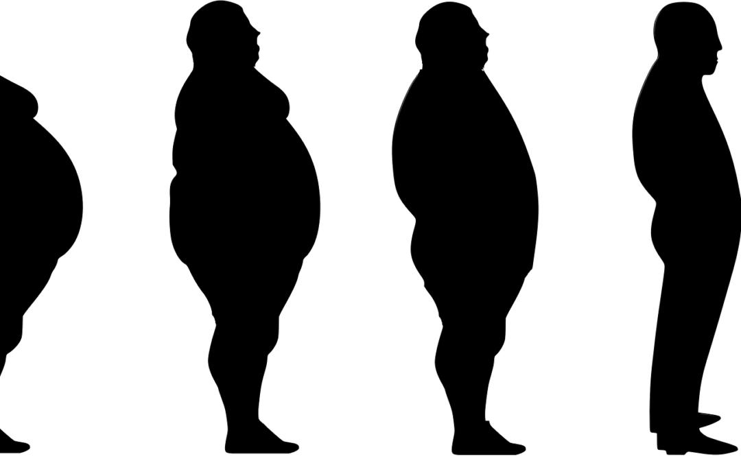 Le fructose est-il la cause de l'obésité